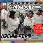 URCHIN FARM MONOchrome